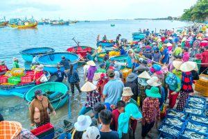 Mui Ne Market And Fishing Harbor