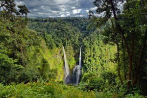 Bolaven Plateau & Tad Fane Waterfall