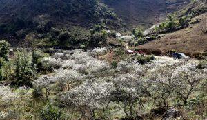 Hang Kia – Pa Ko Valley